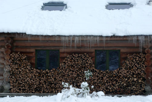 Fuste sous la neige